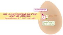 Le guide du consommateur dur à cuire : les bons œufs.