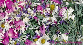 fleurs en 'vrac'